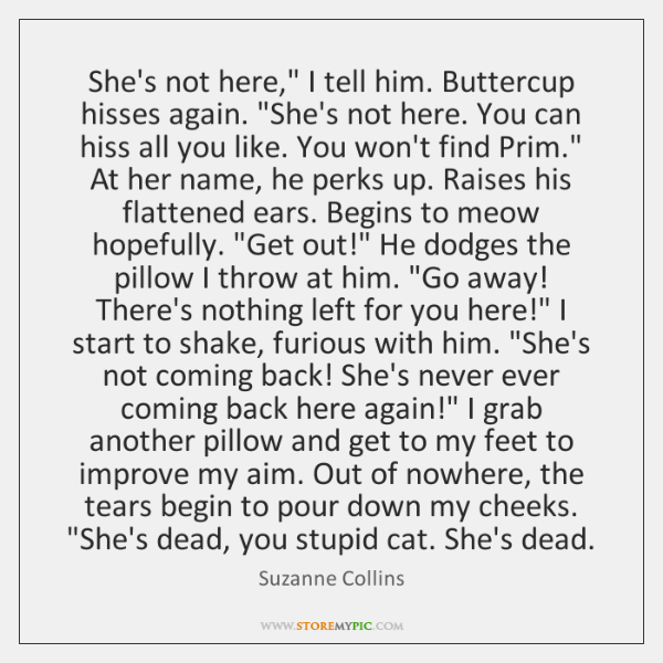"""She's not here,"""" I tell him. Buttercup hisses again. """"She's not here. ..."""