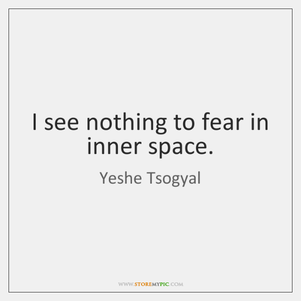 I see nothing to fear in inner space.