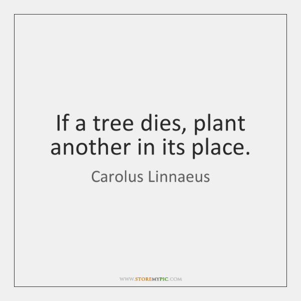 If a tree dies, plant another in its place.