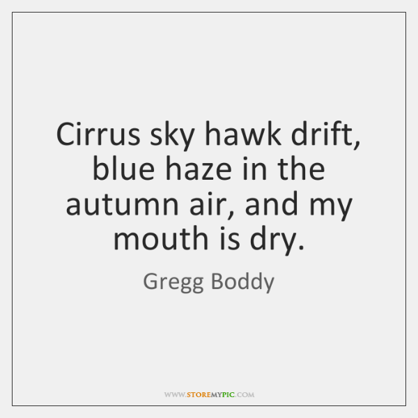 Cirrus sky hawk drift, blue haze in the autumn air, and my ...