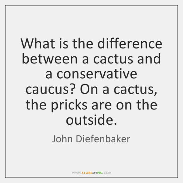 What is the difference between a cactus and a conservative caucus? On ...