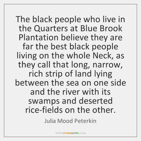 The black people who live in the Quarters at Blue Brook Plantation ...