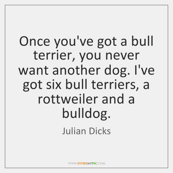 Once you've got a bull terrier, you never want another dog. I've ...
