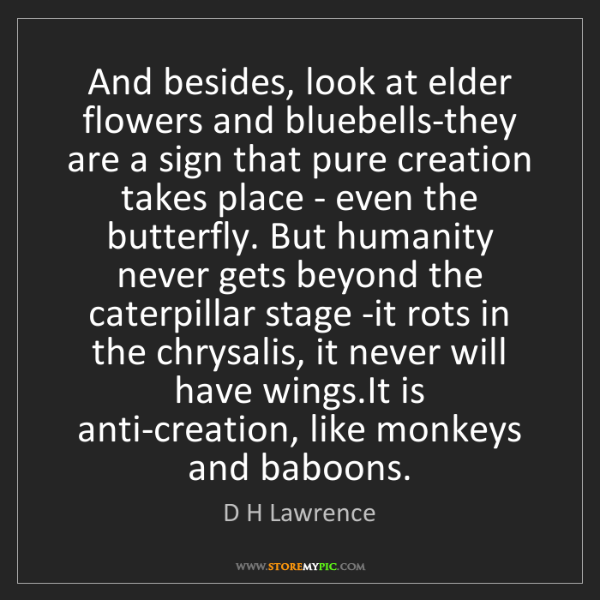 D H Lawrence: And besides, look at elder flowers and bluebells-they...