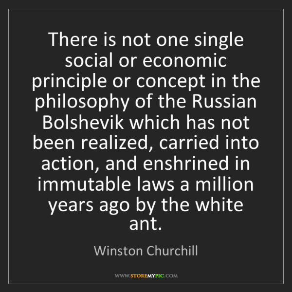 Winston Churchill: There is not one single social or economic principle...