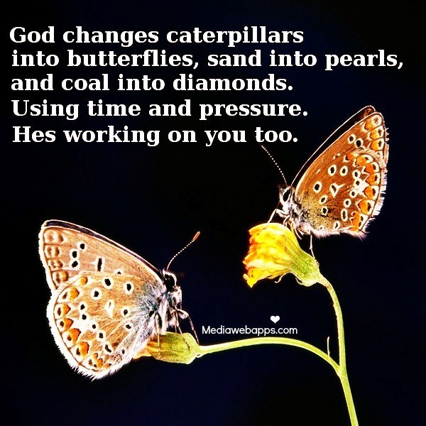 God changes caterpillars into butterflies sand into pearls and coal into diamonds using