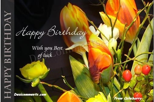 Happy birthday wish you best of luck greeting card