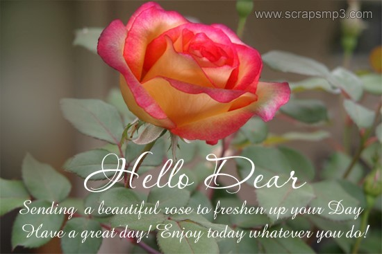 Hello dear sending a beautiful rose to freshen up your day