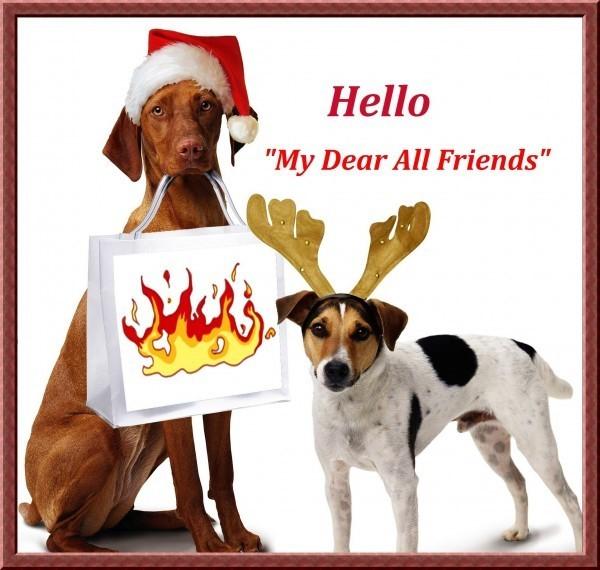 Hello my dear all friends dogs