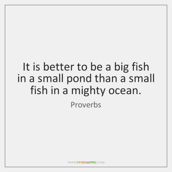 It is better to be a big fish in a small pond ...