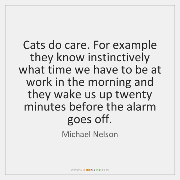 Cats do care. For example they know instinctively what time we have ...