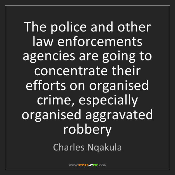 Charles Nqakula: The police and other law enforcements agencies are going...