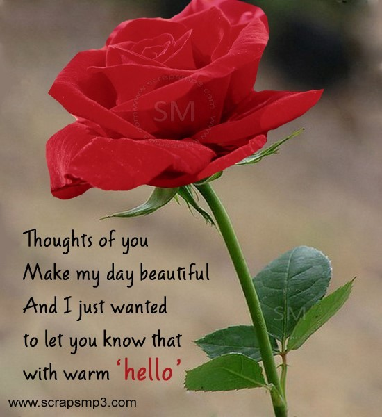 Thoughts of you make my day beautiful and i just wanted to let you know that with warm hello