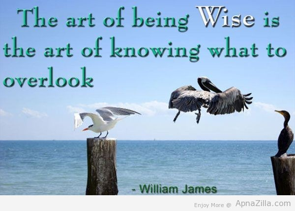 The art of being wise is the art of knowing what to overlook