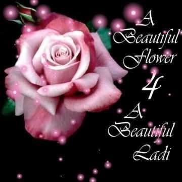 A beautiful flower 4 a beautiful lady