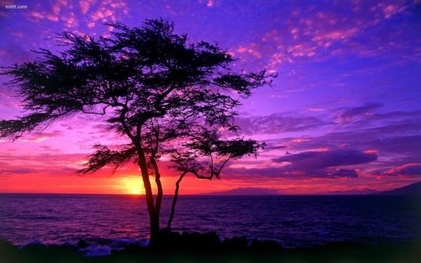 Beautiful sunset view hd wallpaper