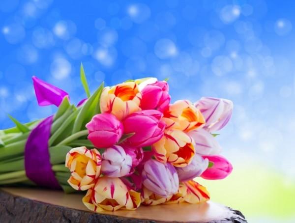 Beautiful tulip flowers bouquet