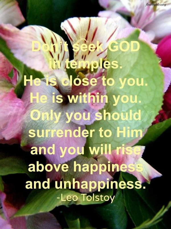 Dont seek god in temples he is close to you he is within you
