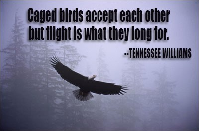 Caged birds accept each other but flight is what they long for tennessee williams