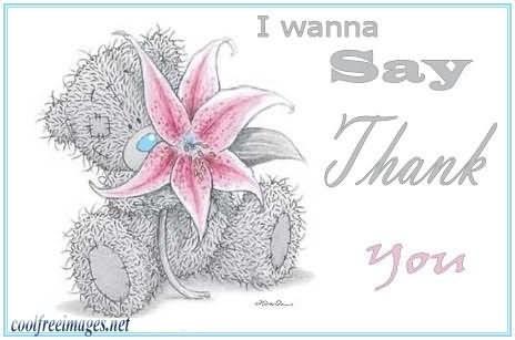 I wanna say thank you teddy bear