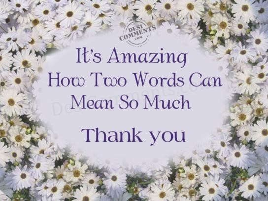 Its amazing how two words can mean so much thank you