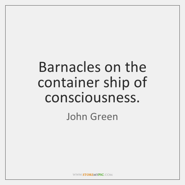 Barnacles on the container ship of consciousness.