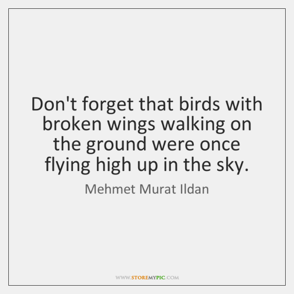 Don't forget that birds with broken wings walking on the ground were ...