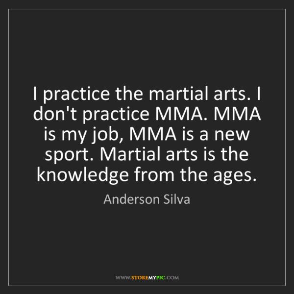 Anderson Silva: I practice the martial arts. I don't practice MMA. MMA...