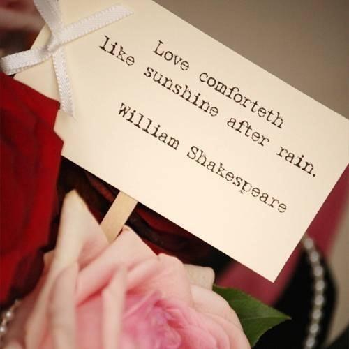 Love Comforteth Like Sunshine After Rain William Sahespeare Storemypic