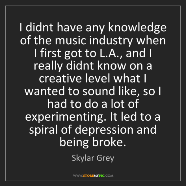 Skylar Grey: I didnt have any knowledge of the music industry when...