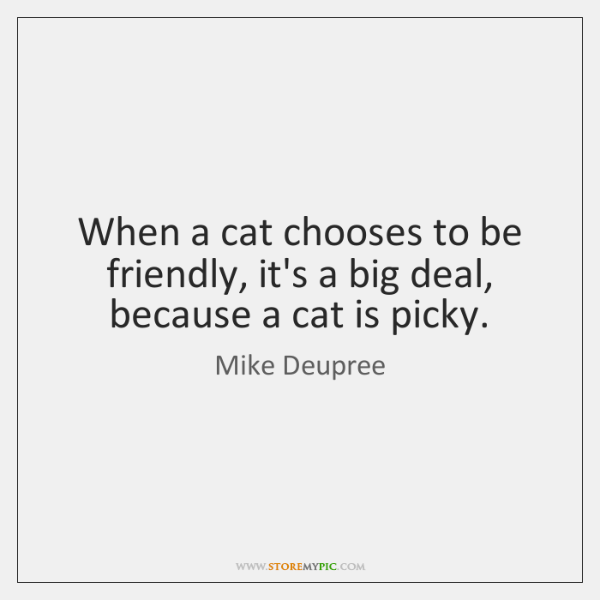 When a cat chooses to be friendly, it's a big deal, because ...