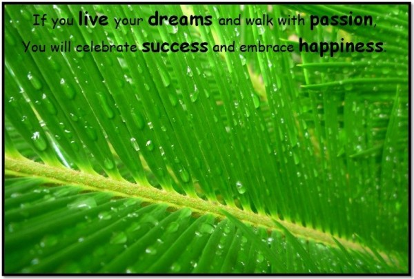 If you live your dreams and walk with pasion you will celebrate success and embrace ha