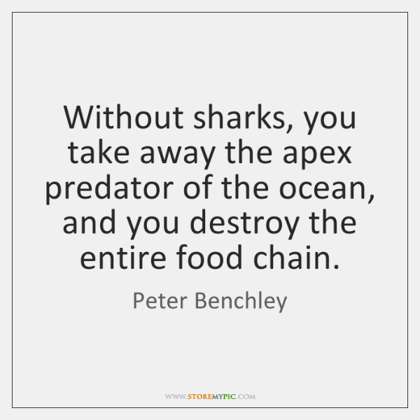 Without sharks, you take away the apex predator of the ocean, and ...