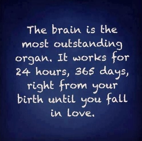 The brain is the most outstanding organ it works for 24 hours 365 days right from your