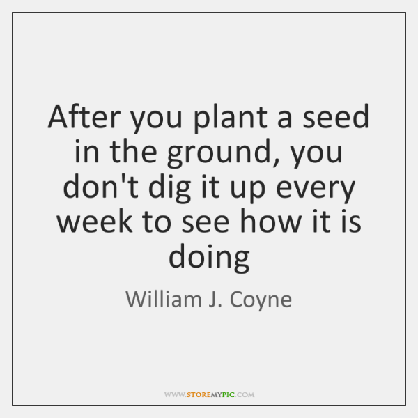 After you plant a seed in the ground, you don't dig it ...