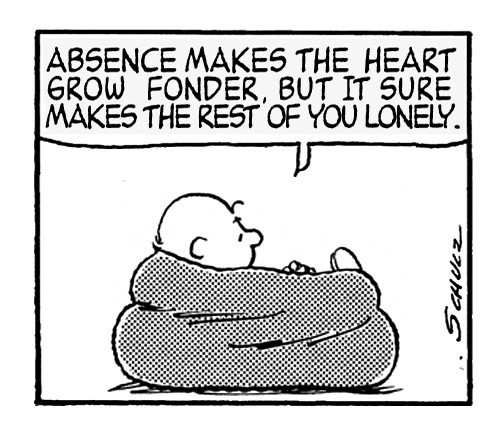 Absence makes the heart grow fonder but it sure makes the rest of you lonely 2