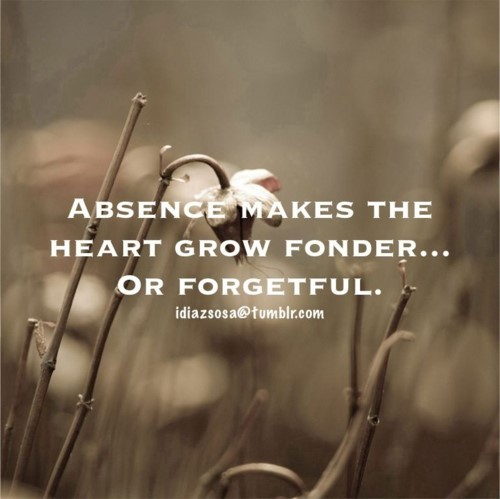 Absence makes the heart grow fonder or forgetful