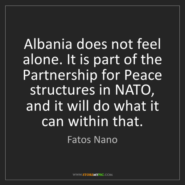 Fatos Nano: Albania does not feel alone. It is part of the Partnership...