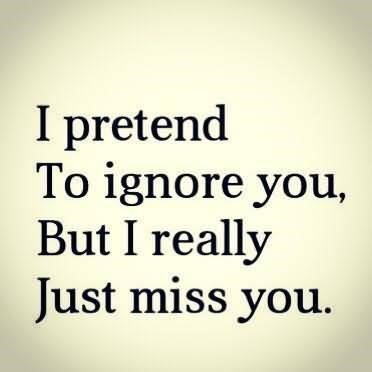 I Pretend To Ignore You But I Really Just Miss You Storemypic