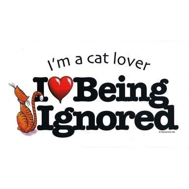 Im a cat lover i love being ignored 002