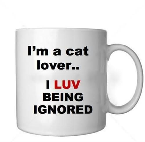Im a cat lover i luv being ignored