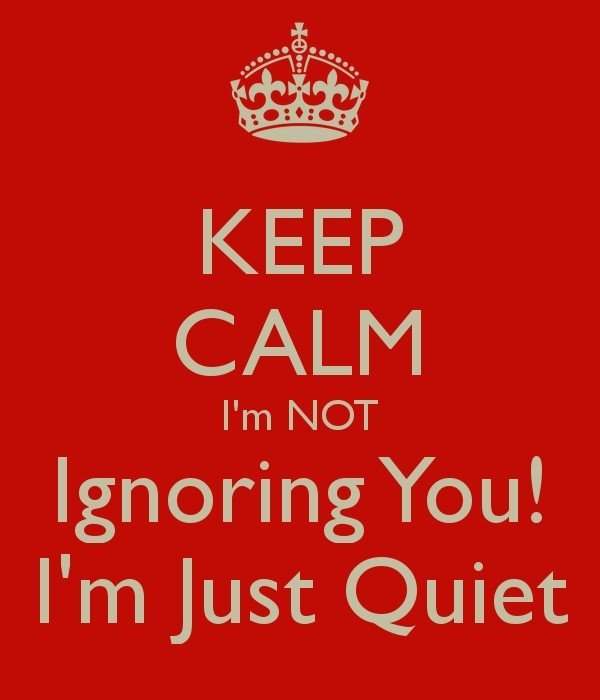 Keep calm im not ignoring you im just quiet