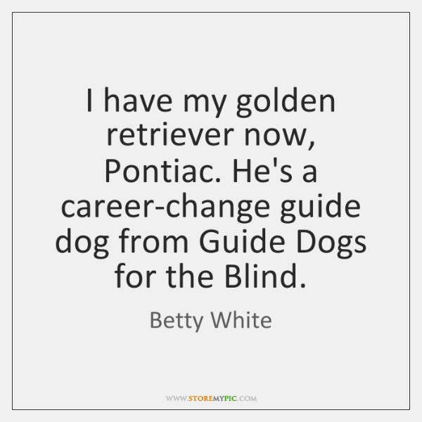 I have my golden retriever now, Pontiac. He's a career-change guide dog ...