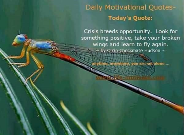 Crisis breeds opportunity look for something positive take your broken wings and learn to fly again