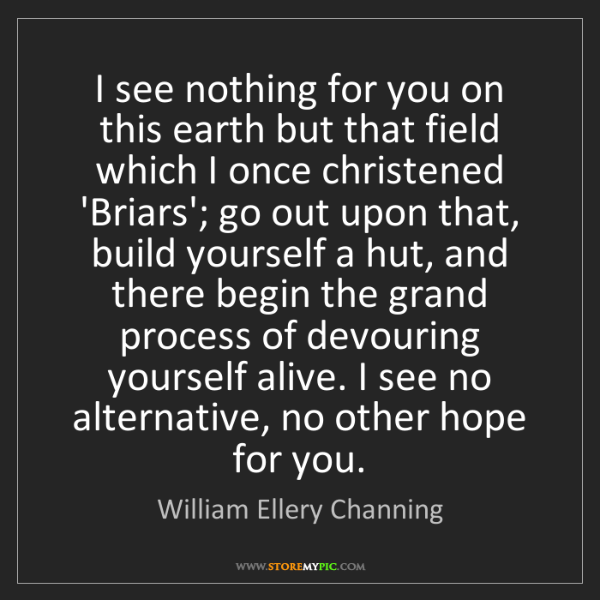 William Ellery Channing: I see nothing for you on this earth but that field which...