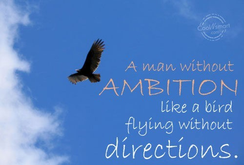 A man without ambition like a bird flying without directions