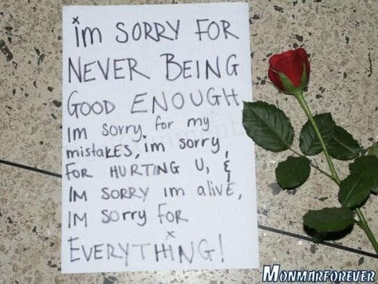 Im sorry for never being good enough