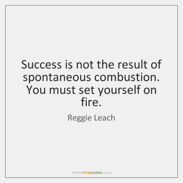 Success is not the result of spontaneous combustion. You must set yourself ...