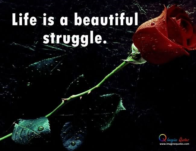 Life Is A Beautiful Struggle 002 Storemypic