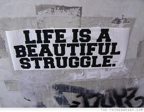 Life Is A Beautiful Struggle 5 Storemypic